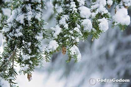 Прогноз погоды владимирская область собинский район
