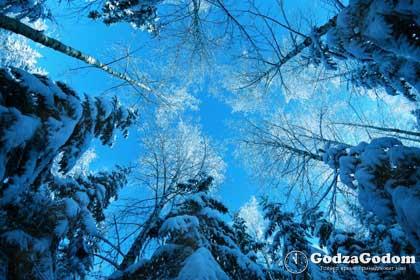 Зима 2017 года - прогноз погоды