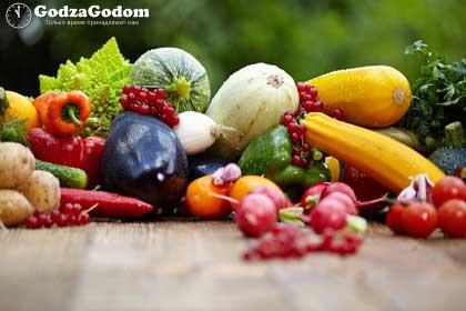 Урожай 2017 - для огородника и садовода