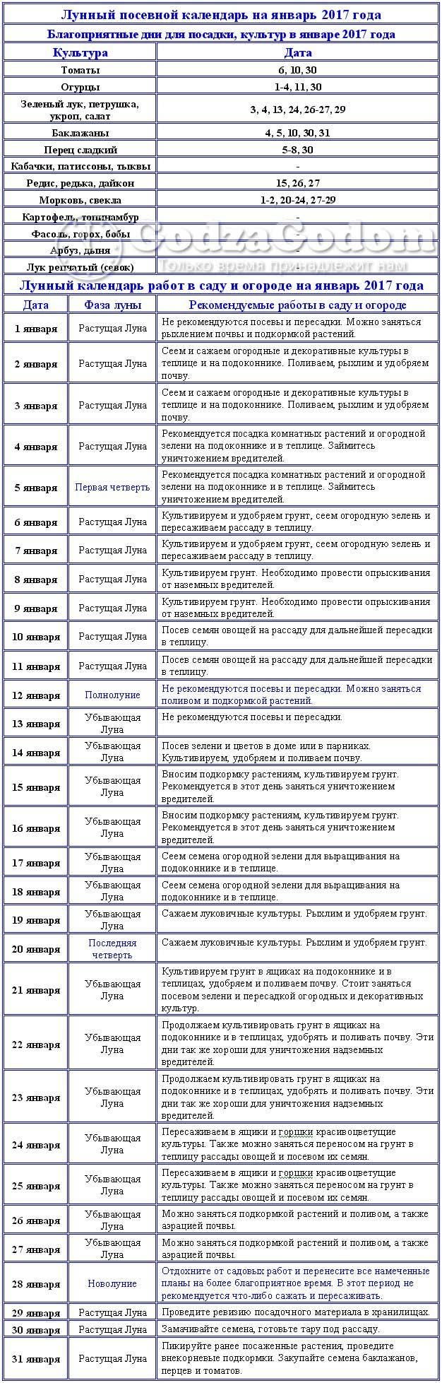 Таблица посевного лунного календаря на январь 2017 г.