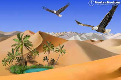 Экстремальная встреча Нового года 2017 - в пустыне