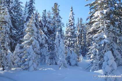 Зима в России 2017-2018: прогноз погоды от синоптиков