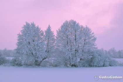 Настоящая русская зима в феврале месяце