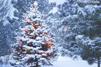 Прогноз погоды для РФ на Новый год 2018