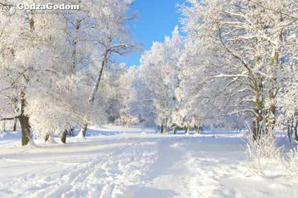Зимой 2018 года будет преобладать снежная погода