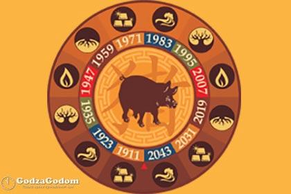 Символ 2019 года по восточному гороскопу - Свинья (Кабан)