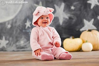 Ребенок рожденный в год Свиньи (Кабана)