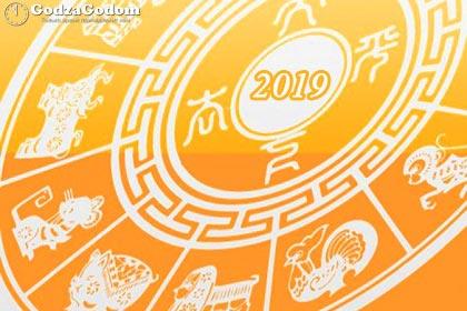 Гороскоп на 2019 год Свиньи (Кабана) по годам рождения