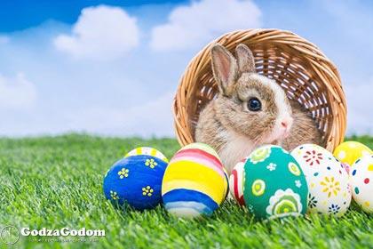 Пасхальный кролик - главный символ Пасхи у католиков