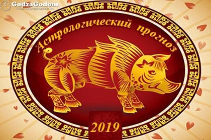 Астрологический прогноз на 2019 год желтой Свиньи