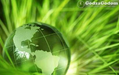 2017 год объявлен в России — годом экологии