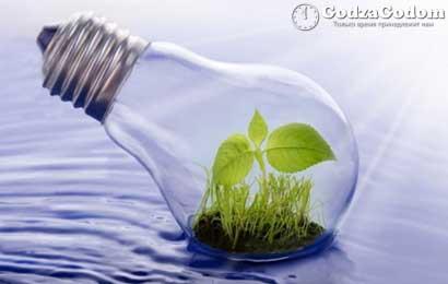 В России 2017 г. станет годом решения экологических проблем