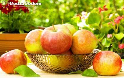 Яблочный или Второй Спас в 2017 году - 19 августа