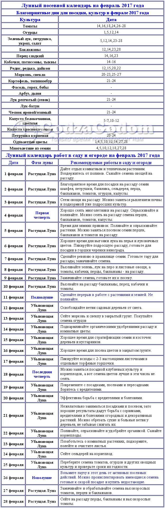Таблица посевного лунного календаря на февраль 2017 г.