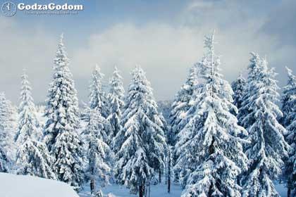 Зима 2016-2017: прогноз погоды от синоптиков