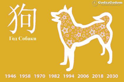 Год желтой Собаки 2018