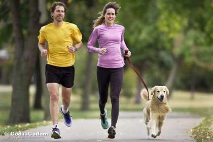 Утренняя пробежка с Собакой - залог здоровья
