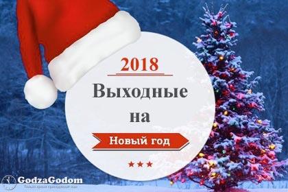 Как отдыхаем на Новый год 2018 в России