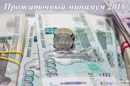 Каким будет прожиточный минимум в 2018 году в России