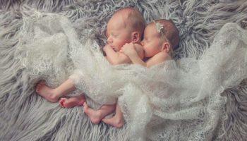 Дети, рожденные в год Свиньи 2019