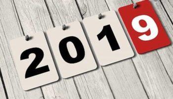 Наступающий Новый Год 2019 какого животного? 4 правила для удачного года