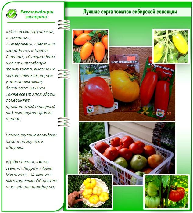 Календарь садовода и огородника Урала на 2019 год