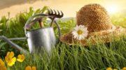 Календарь садовода и огородника Урала