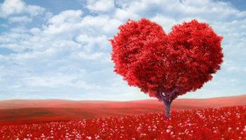 14 февраля: традиции Дня святого Валентина
